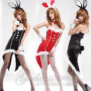 兔女郎服装,情缘服装